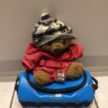 Ted the Mountaineering Bear